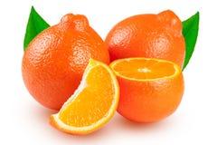 两个桔子蜜桔或Mineola与在白色背景隔绝的叶子 免版税库存照片