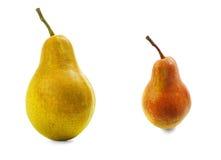 两个梨红色和黄色与在白色背景的阴影 库存图片