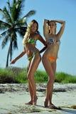 两个比基尼泳装模型摆在性感在棕榈树前面 免版税库存照片