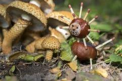 两个滑稽的栗子动物下个蘑菇,传统秋天手工造,狮子 免版税库存照片
