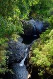 两个瀑布和水水坑沿Pipiwai在Haleakala国家公园,毛伊,夏威夷落后 免版税库存图片