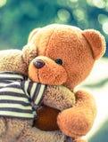 两个熊玩偶 免版税图库摄影
