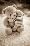 两个熊玩偶 免版税库存照片