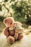 两个熊玩偶 库存图片
