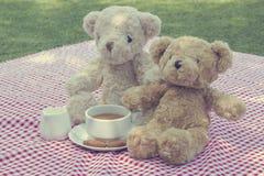 两个玩具熊在公园去野餐坐红色和白色织品 库存图片