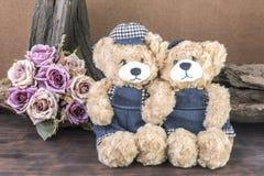 两个玩具熊在演播室 免版税库存照片