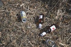 两个瓶和罐头啤酒discharded入草 免版税库存图片