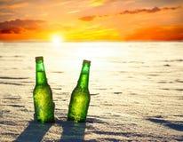 两个瓶在雪的冰镇啤酒在日落 图库摄影