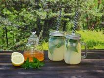 两个瓶子与闪耀的矿泉水、薄菏和蜂蜜的新鲜的柠檬水 免版税库存照片