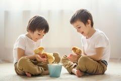 两个甜小孩,学龄前男孩,兄弟,演奏机智 免版税库存图片