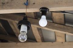 两个电灯泡垂悬 免版税库存照片