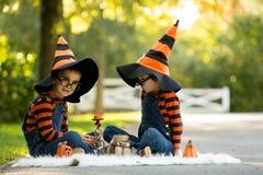 两个男孩在有万圣夜服装的公园,获得乐趣 免版税库存照片