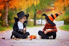 两个男孩在有万圣夜服装的公园 免版税图库摄影
