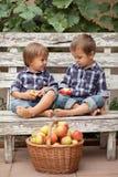两个男孩,坐长凳,吃苹果和获得乐趣 免版税库存图片
