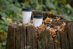 两个白皮书杯子是在老树桩在前景的秋天森林里一片干燥秋天橡木叶子 库存照片