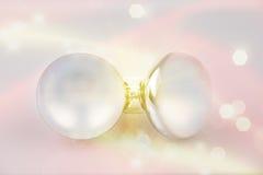 两个白色表面无光泽的电灯泡 库存照片
