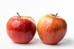 两个红色苹果看法  免版税库存照片