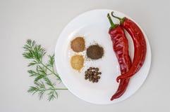 两个红辣椒和碎胡椒在白色板材 库存照片