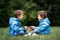 两个美丽的男孩,兄弟,坐草坪,秋天时间,博士 免版税库存图片