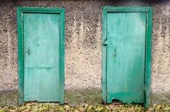 两个老削皮绿色木门 免版税库存图片