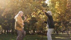 两个老朋友跳舞和有乐趣在秋天公园,活跃生活方式,喜悦 图库摄影