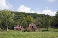 两个老红色谷仓 免版税库存照片
