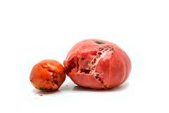 两个腐烂的蕃茄 免版税库存照片