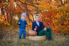 两个英俊的逗人喜爱的兄弟坐南瓜在单独秋天森林里 免版税库存照片