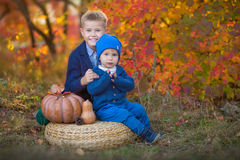 两个英俊的逗人喜爱的兄弟坐南瓜在单独秋天森林里 库存照片