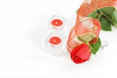 两个蜡烛和一朵红色玫瑰在白色背景 与拷贝空间的照片 库存图片