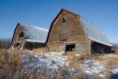 两个被放弃的谷仓在冬天 免版税库存照片