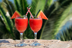 两个西瓜圆滑的人由海的暑假 免版税库存图片