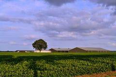 两个谷仓和肥料处理器 免版税库存图片