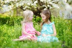 两个逗人喜爱的妹在开花的樱桃庭院里 免版税库存图片