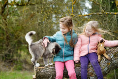 两个逗人喜爱的妹坐与他们的宠物猫的一本树日志 库存照片