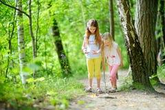 两个逗人喜爱的妹获得乐趣在森林远足期间在美好的夏日 与孩子的活跃家庭休闲 库存照片