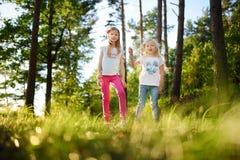 两个逗人喜爱的妹获得乐趣在森林远足期间在美好的夏日 与孩子的活跃家庭休闲 免版税库存图片