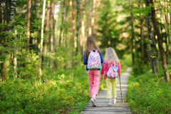两个逗人喜爱的妹获得乐趣在森林远足期间在美好的夏日 免版税库存照片