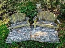 两个长木凳在森林 库存照片