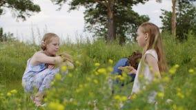 两个青少年的女孩触犯了男孩一起坐沼地,并且他起来了并且离开 股票录像