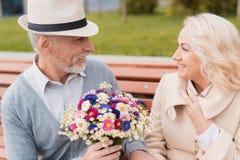 两个领抚恤金者坐在胡同的一条长凳 一个年长人给妇女花 免版税库存照片