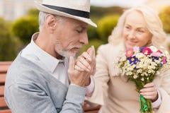 两个领抚恤金者坐在胡同的一条长凳 一个年长人轻轻地亲吻一只妇女` s手 免版税库存图片
