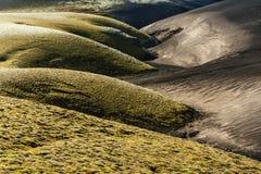 两个颜色沙丘  免版税库存照片
