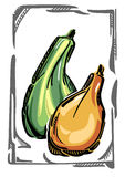 两个风格化传染媒介金瓜、绿色和桔子 免版税图库摄影