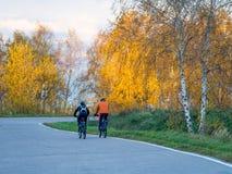 两个骑自行车者在公园 免版税库存图片