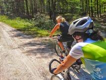 两个骑自行车者在森林 库存照片