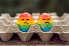 两个鸡蛋在彩虹的颜色被上色作为g旗子  免版税库存图片