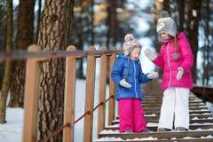 两个滑稽的可爱的妹获得乐趣一起在冬天公园 免版税库存图片