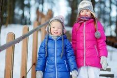 两个滑稽的可爱的妹获得乐趣一起在冬天公园 库存图片