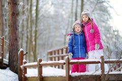 两个滑稽的可爱的妹获得乐趣一起在冬天公园 免版税库存照片